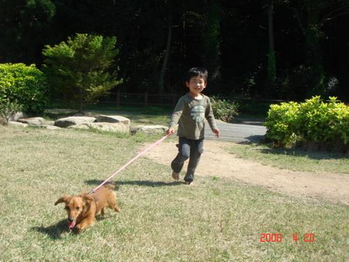 2008/4/20 公園散歩